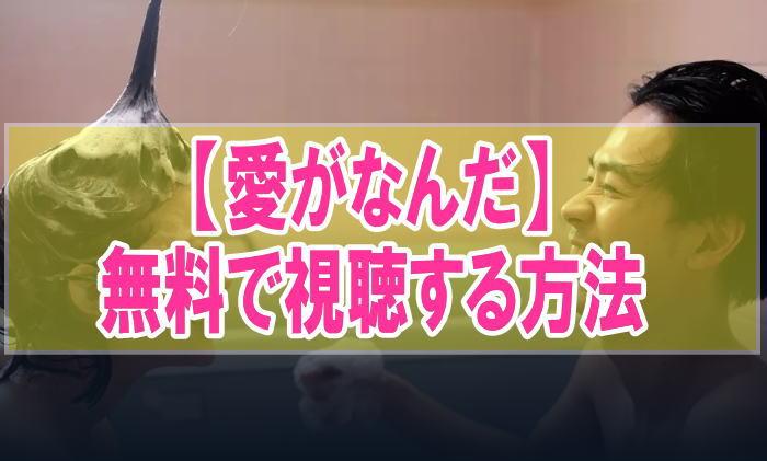 映画『愛がなんだ』のフル動画を無料で見る!視聴者の感想・評価・評判